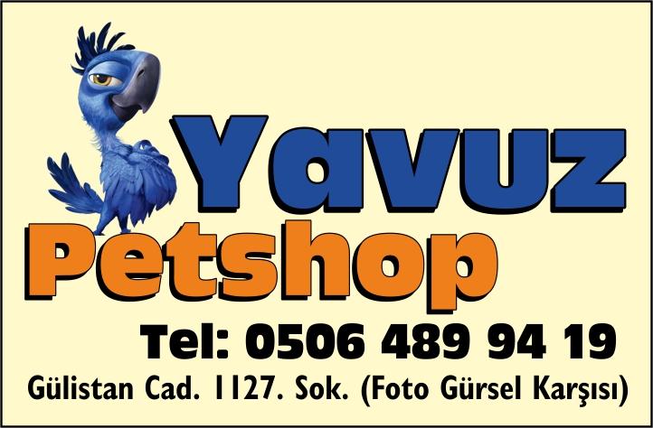 Yavuz Petshop