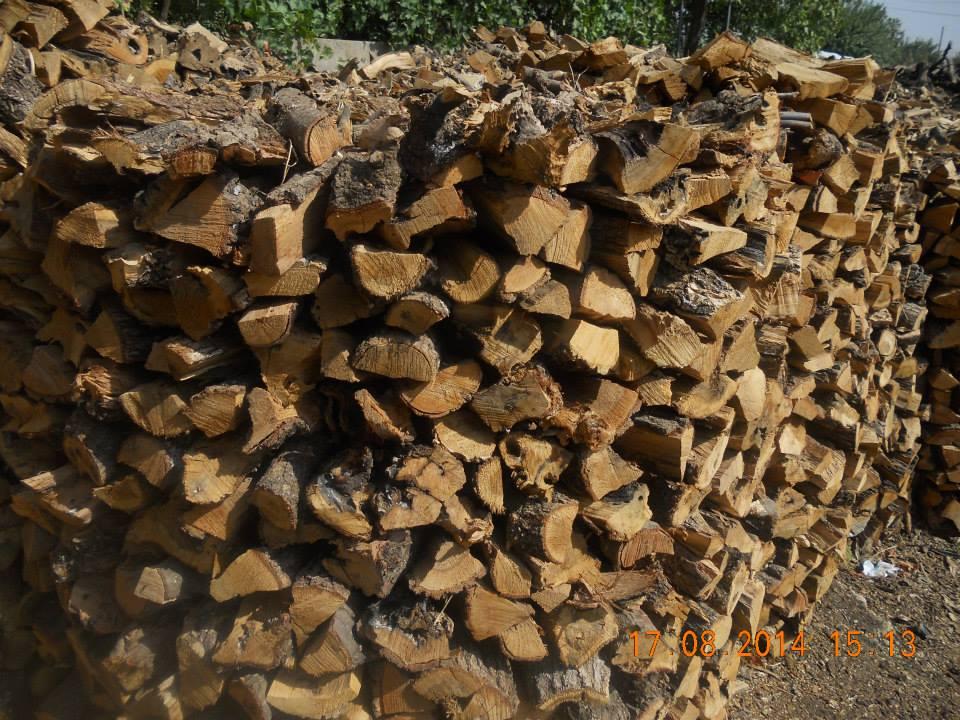 Taygav  Odun ve Kömürcülük